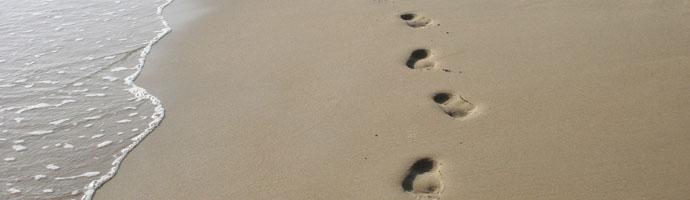 footprint_banner